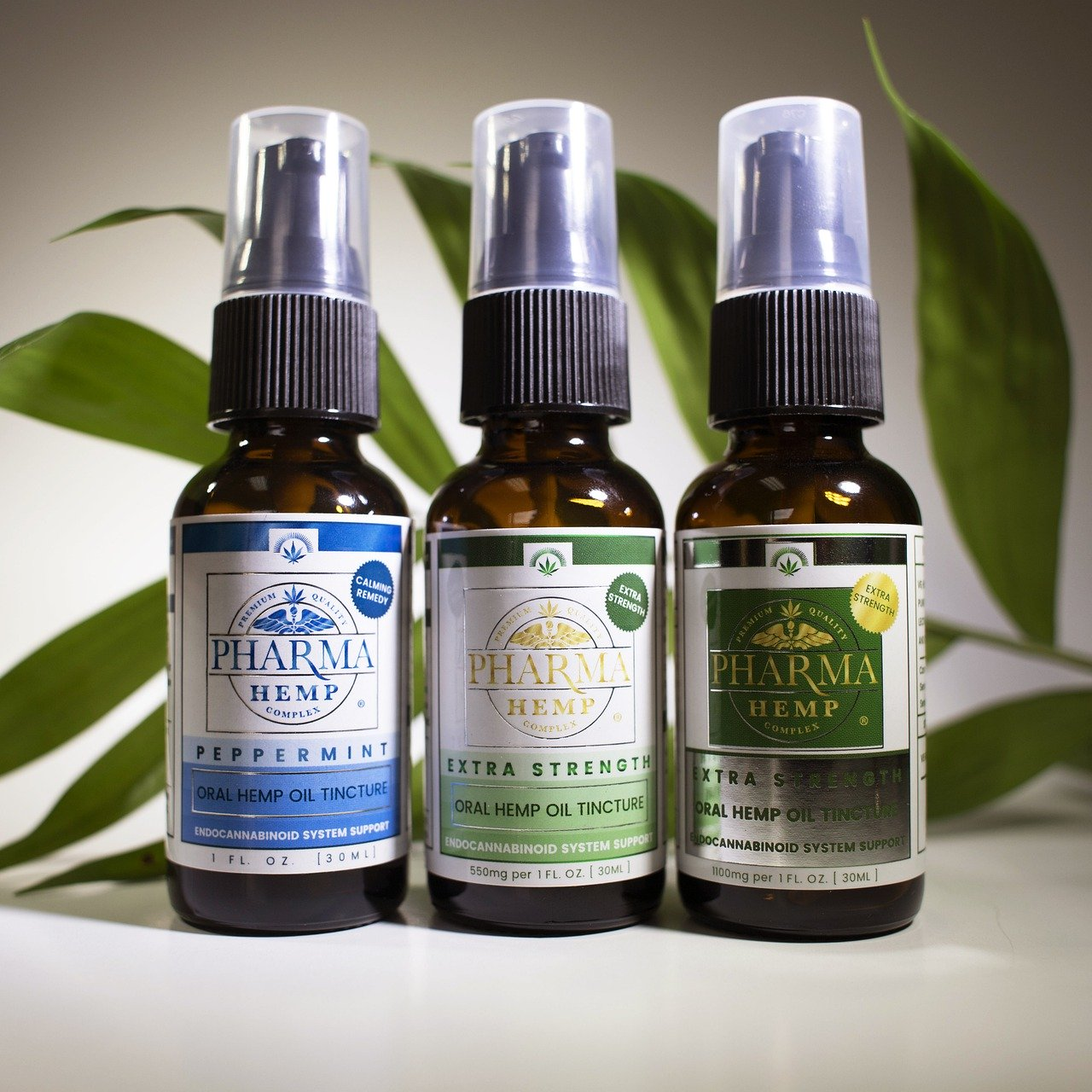 CBD Oil VS CBD Tinctures- What's the Difference?